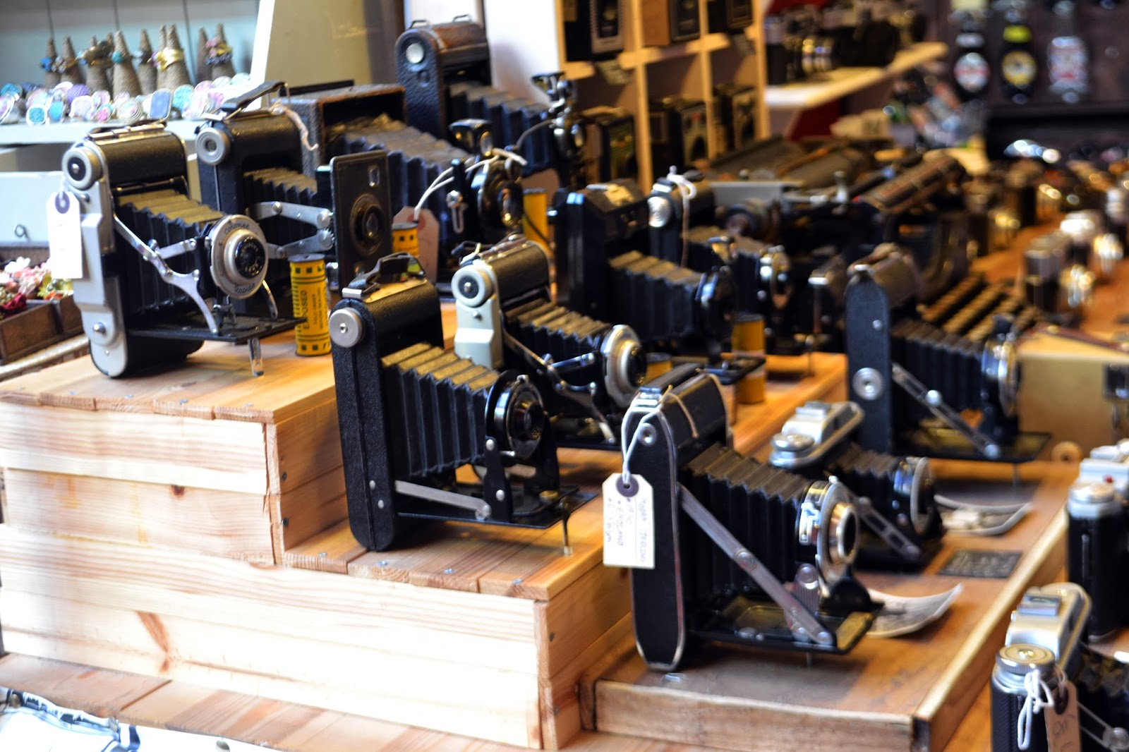 Multiple shelves filled with vintage cameras for sale