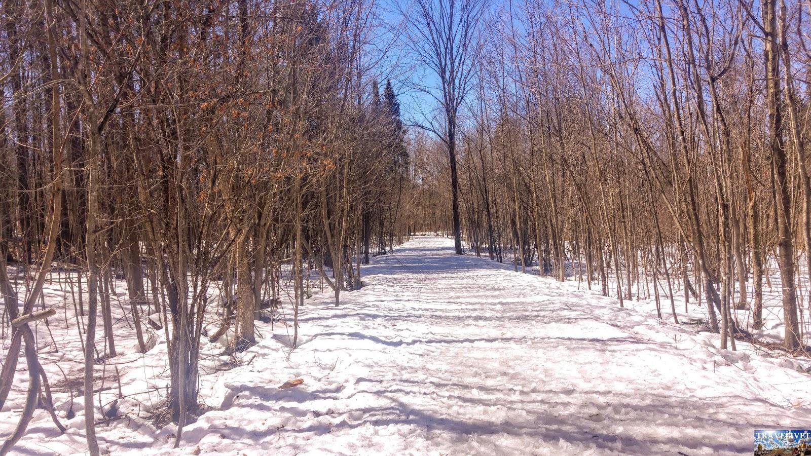 Canada Ottawa Parc Gatineau
