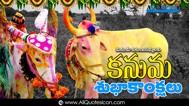 Kanuma-Wishes-In-Telugu-HD-Wallpapers-Inspiration-quotes-Kanuma-Greetings-Pongal-Festival-Wallpapers-Squotes-Whatsapp-images-Facebook-pictures-wallpapers-photos-greetings-Thought-Sayings-free