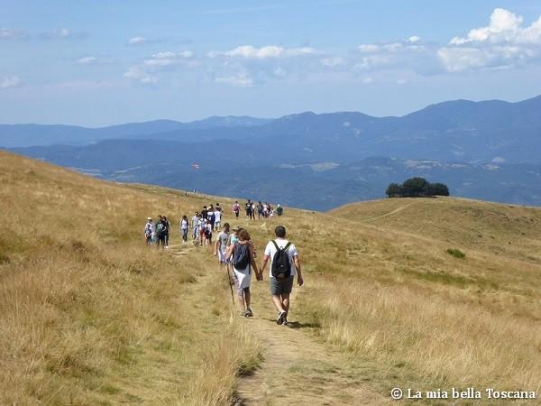 camminate in Toscana