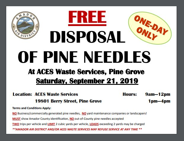 Free Disposal of Pine Needles, Pine Grove - Sat Sept 21