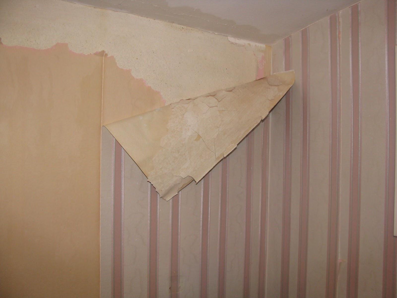 wallpaper wallpaper peeling off walls. Black Bedroom Furniture Sets. Home Design Ideas