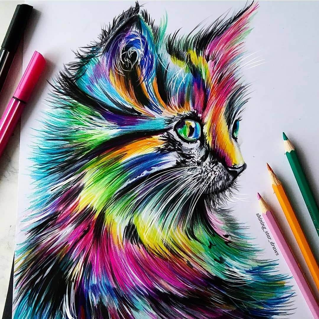 11-Rainbow-Cat-Astchiek-Melkonian-Plenty-of-Color-in-Paintings-and-Drawings-www-designstack-co