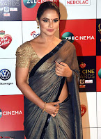 Neetu Chandra in Saree Walk the Red Carpet of Zee Awards 2017i ~  Exclusive Galleries 023.jpg