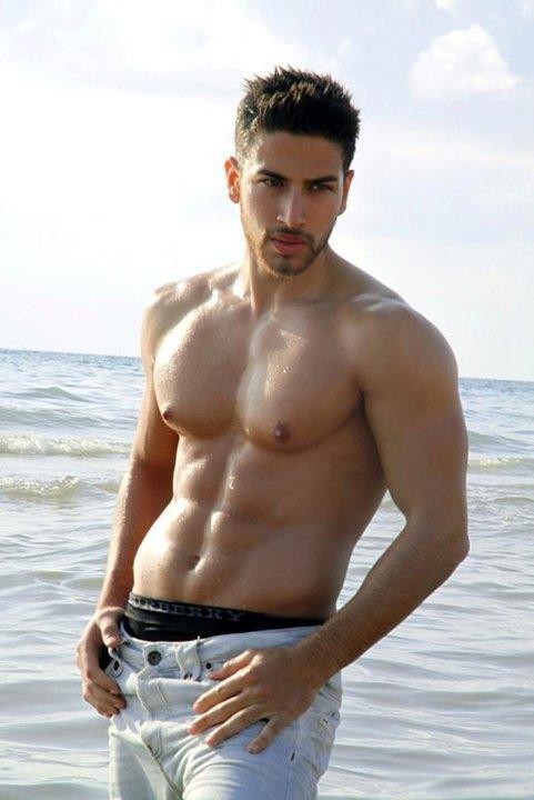mister lebanon international 2012 ali hammoud beauty