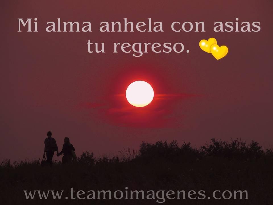 Imagenes Con Frases De Amor Ala Distancia
