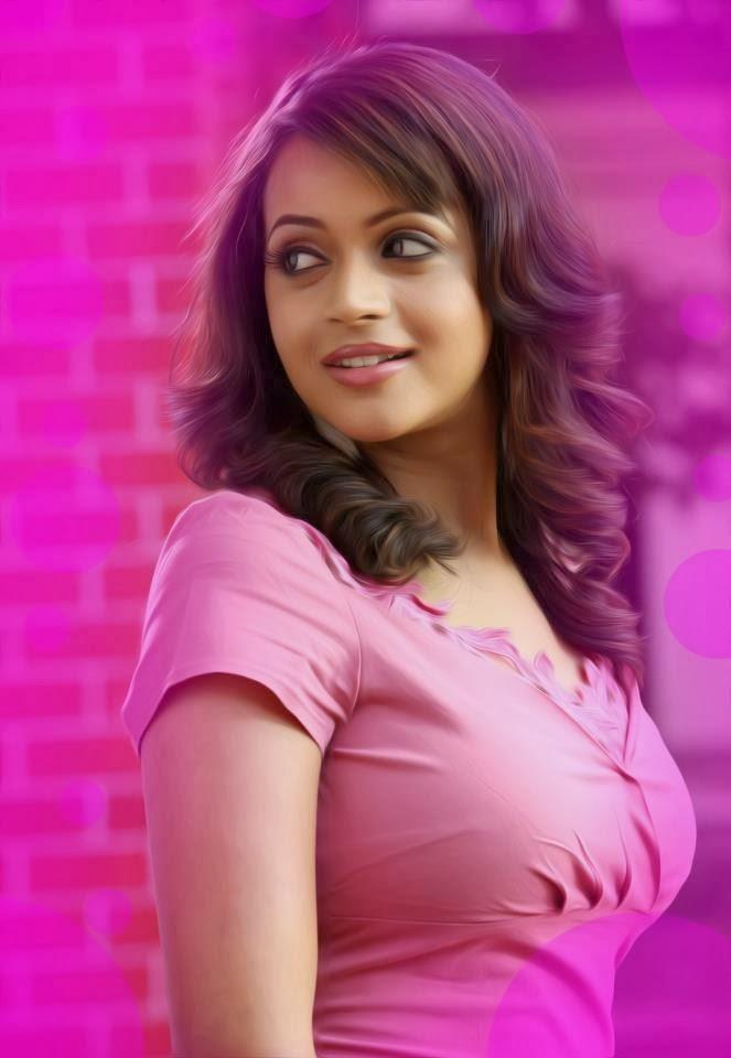 Malayalam TV Serial Actress: February 2013