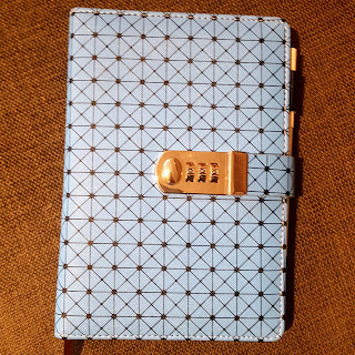 Dan Jon's Diary