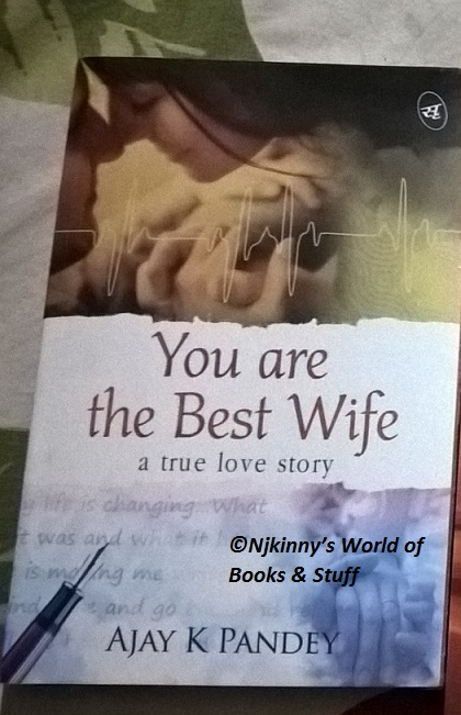 Book Review You Are The Best Wife By Ajay K Pandey Njkinny S