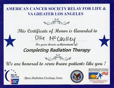 Ollie's Completion of Radiation Therapy Certificate