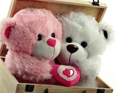Gambar Wallpaper Boneka Beruang Dalam Kotak