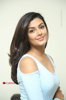 Anisha Ambrose Latest Pos Skirt at Fashion Designer Son of Ladies Tailor Movie Interview .COM 0667.JPG