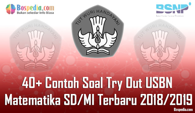 40+ Contoh Soal Try Out USBN Matematika SD/MI Terbaru 2018/2019