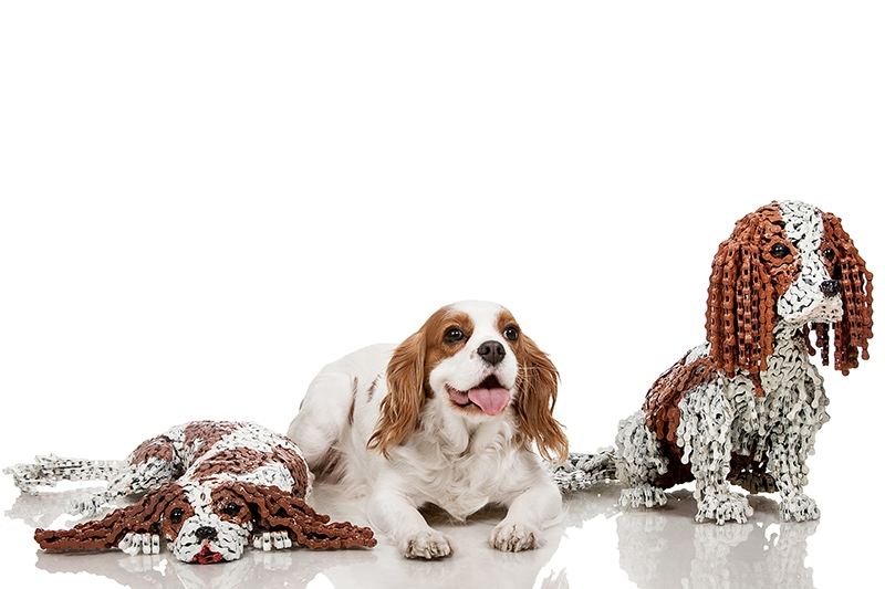 06-Max-and-Maxine-Nirit-Levav-Recycled-Bicycle-Parts-used-for-Unchained-Dog-Sculptures-www-designstack-co