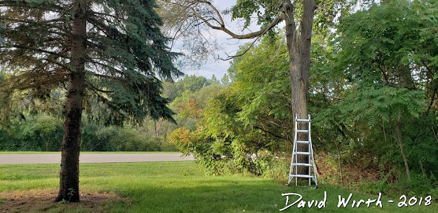 how to tie a swing, swing to tree