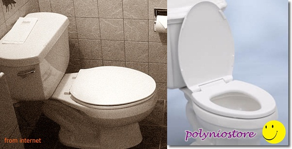 Superb Polyniostore Your Needs In Our Store Toilet Seat Put Up Ncnpc Chair Design For Home Ncnpcorg