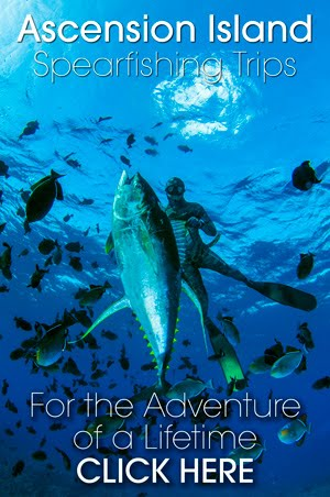 Spearfishing Ascension Island