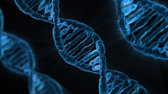 Genetika dan Beberapa Istilah-istilahnya