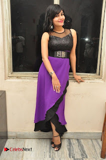 Telugu Actress Rachana Smith Stills at Money is Honey Audio Release  0057.jpg
