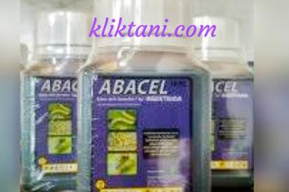 Review Abacel 18EC dan cara terbaik menggunakan insektisida ini