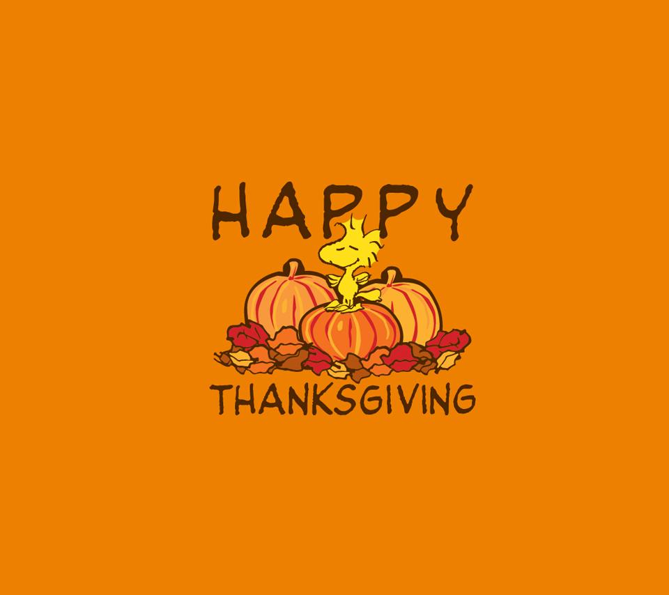 Happy Thanksgiving 2011 !!
