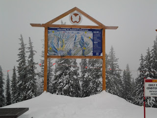 Large outdoor ski map at Monarch Mountain, on a cloudy and snowy day with pine trees covered in snow.