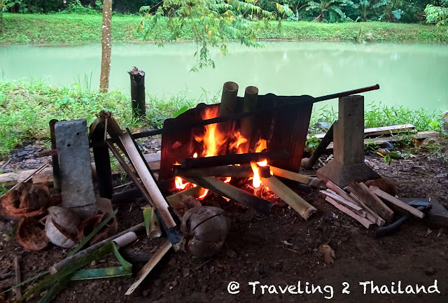 Cooking rice in bamboo at Rungfah Farm Stay in Khao Sok, Thailand
