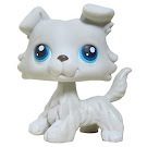 Littlest Pet Shop Singles Collie (#363) Pet