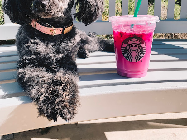 Starbucks Has a New Pink Dragon Drink and TBH, It's Not That Bad