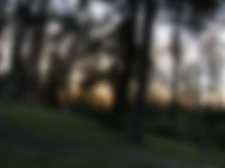 Same sunset and trees, but totally out of focus and blurred. Picture is unrecognizable as trees without the picture above to compare.
