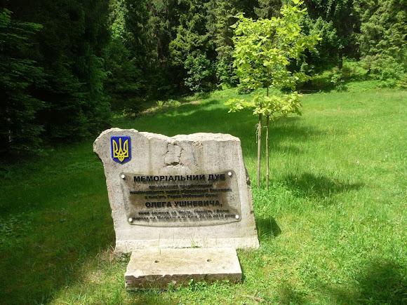 Сколе. Национальный парк «Сколевские бескиды». Мемориал