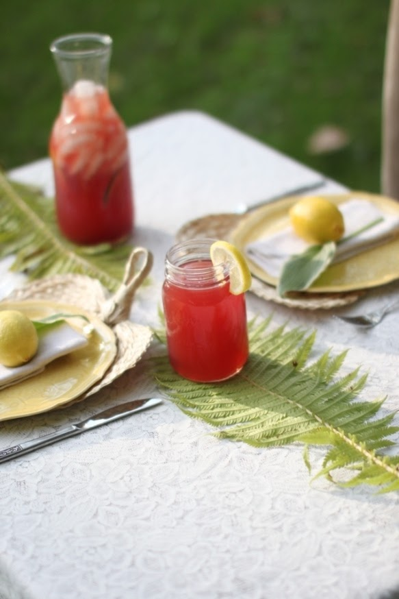 Sukkot Recipes - Four Species Lemonade | Land of Honey