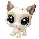 Littlest Pet Shop City Rides Tibsy Apso (#72) Pet