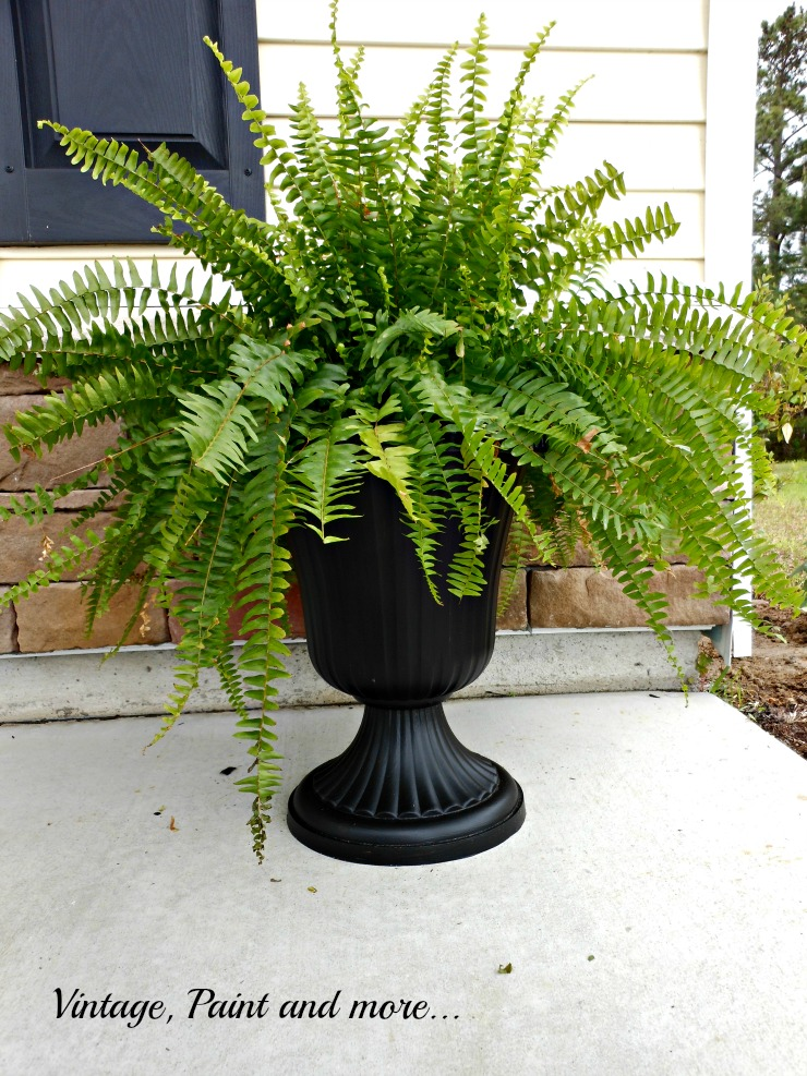 Vintage, Paint and more.. Boston fern in an upcycled urn