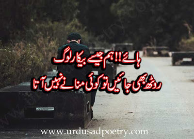 Haye Hum Jaiay Bekaar Loog