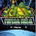 Tải Game Ninja rùa phiên bản mới nhất 2016