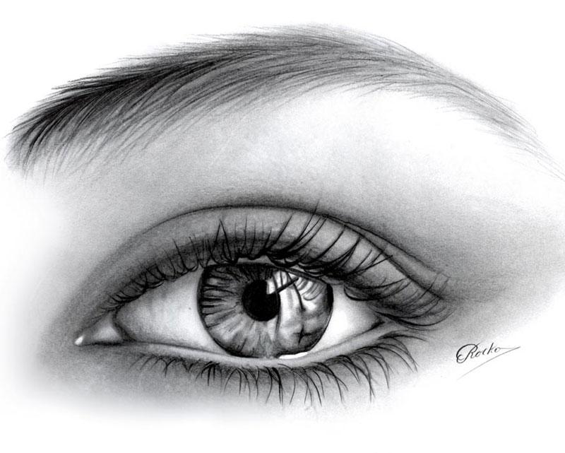 Sketchbook Como Dibujar Ojos Humanos