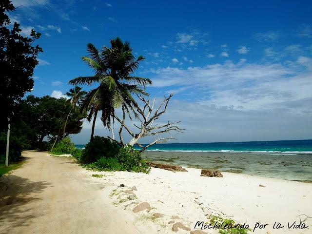 seychelles presupuesto