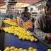 Estados Unidos anunció vía libre para el ingreso de limones argentinos desde el 26 de mayo