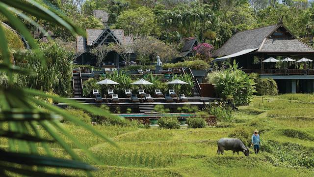 Los más lujosos y mejores hoteles del mundo, Hotel Four Seasons Resort Chiang May