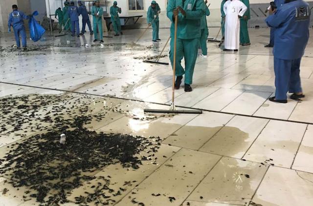 The Great Mosque in Mecca hit by a plague of locusts Screenshot%2B2019-01-11%2Bat%2B10.04.24