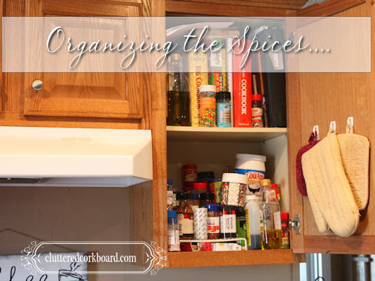 Organizing Kitchen Spices and my fix for that wasted space