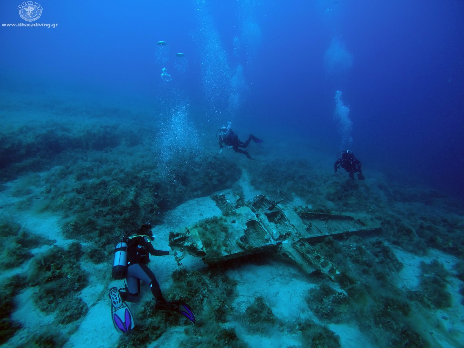 Found A Ww2 Aircraft Wreck In The Island Of Ulysses
