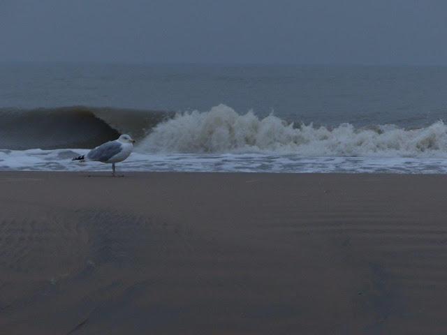 Katwijk aan Zee Holland Niederlande Ausflug Geburtstag Geschenk Gutschein Drachensteigen Meerblick Schnee Strand Meer Kurzurlaub Zeit Freundinnen Strandhütte