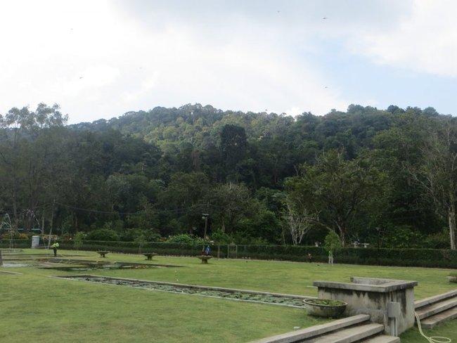 Ботанический сад в Пенанге
