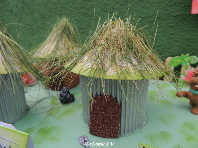 Neolithic house project