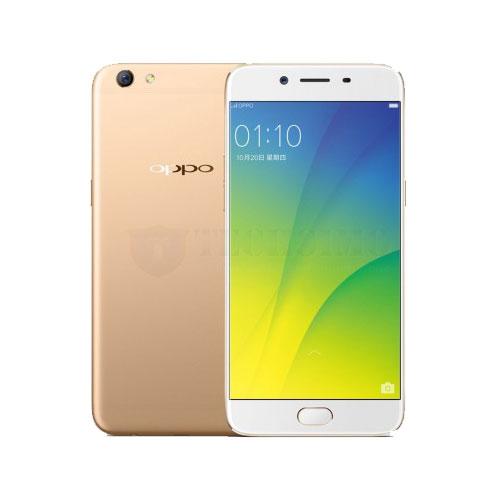 Oppo R9 s Plus