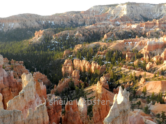 looking into the amphitheater at Sunrise Point in Bryce Canyon