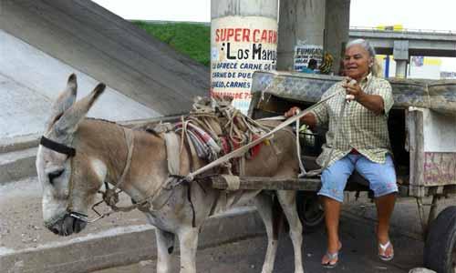 Carreteros de Veracruz