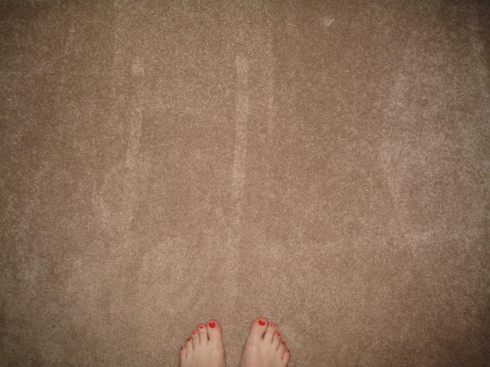 Vacuum Tracks And Carpet | Alphabetical Order
